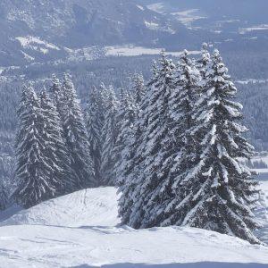 Winterlandschap 2 Decordoek