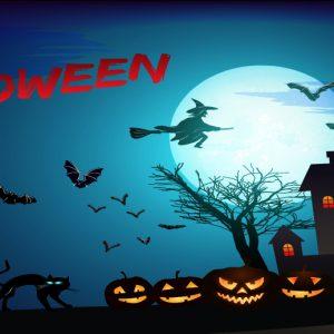 Decordoek Halloween